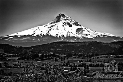 Image of Mount Hood in monochrome... it is the tallest mountain in Oregon  © Copyright Hannah Pastrana Prieto