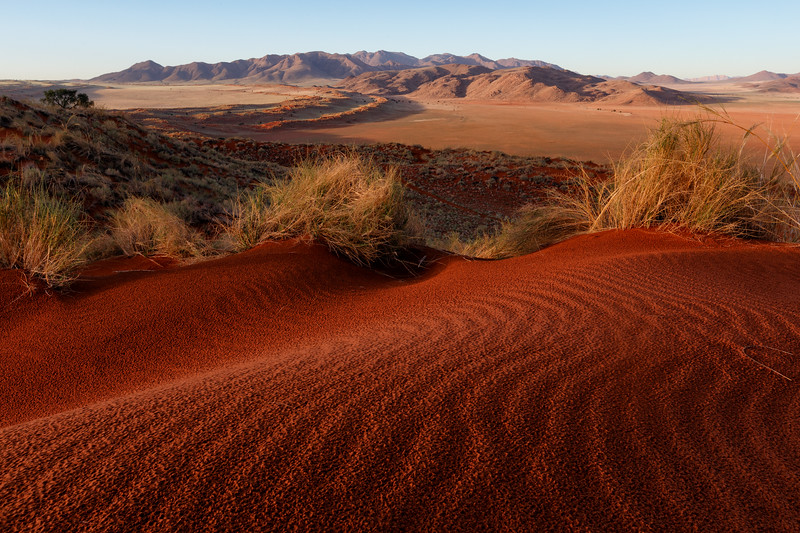 """Red Dunes"""