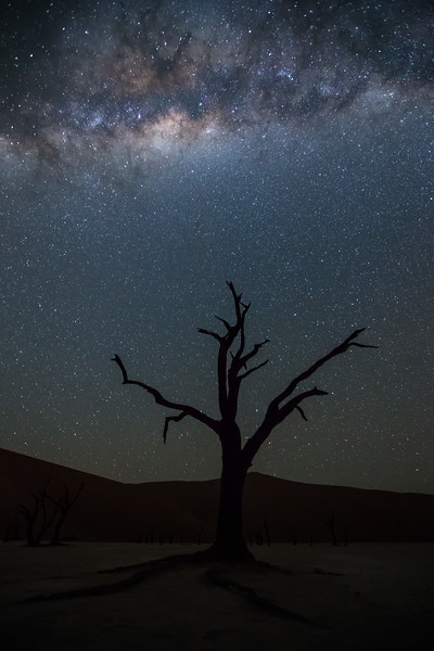 """Deadvlei Milky Way"""