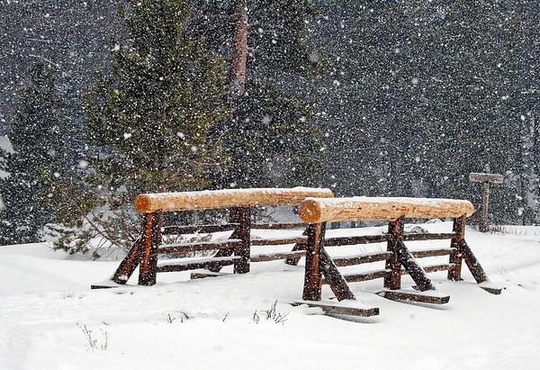 Snowy Sprague Lake Loop Trail