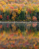 New England : Vermont, New Hampshire, and Maine during peak fall foliage season.