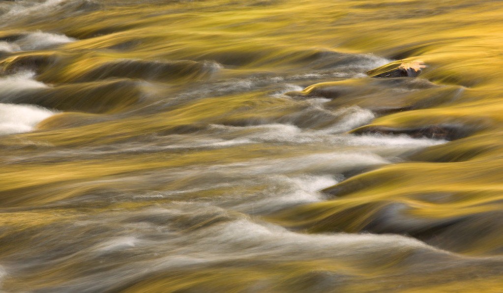 """""""River of Gold"""""""