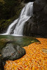 """""""Moss Glen Falls"""""""