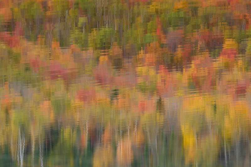 """Autumn Ripples"""