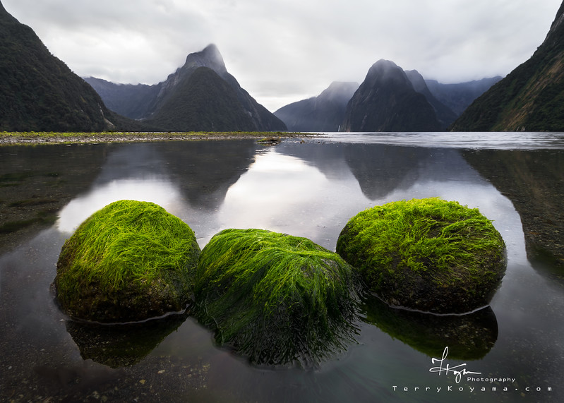 Milford Sound Trio