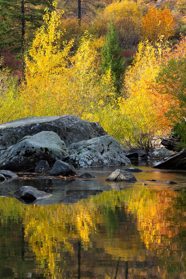 """Reflecting Autumn"""