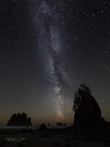 Rialto Beach Milky Way-8733