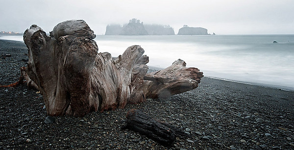 Second Beach Olympic National Park, Washington