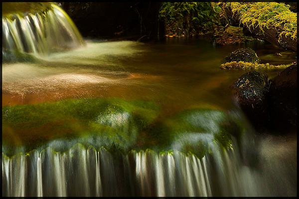 Creek on trail to Sol Duc Falls Olympic National Park, Washington