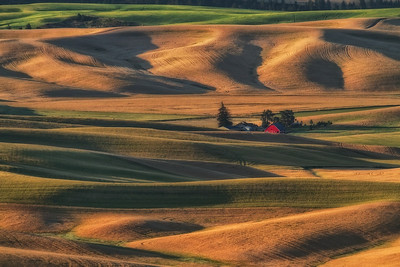 Palouse sunrise from Steptoe Butte.