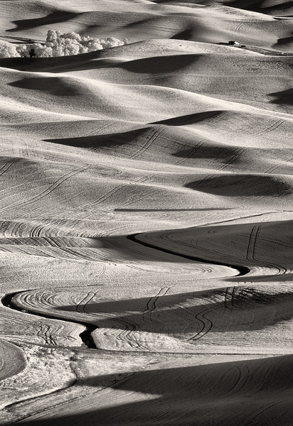 Curves, waves and shadows in the Palouse