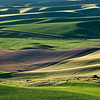 A landscape made by man and nature_ farming in the Palouse