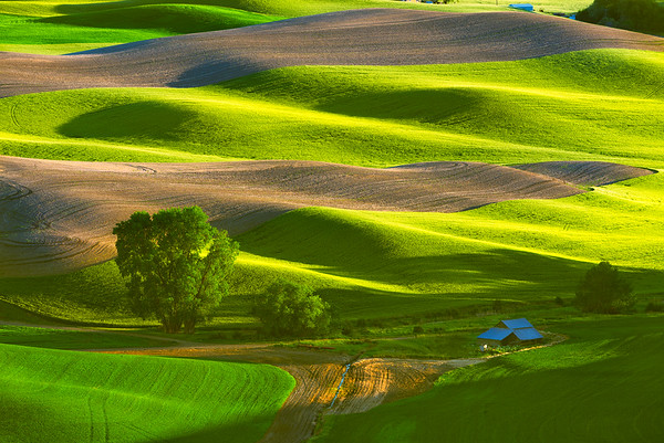 Barn and Fields at sunset from Steptoe Butte