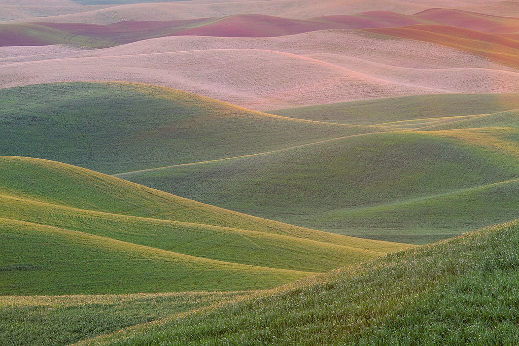 """The Palouse"""