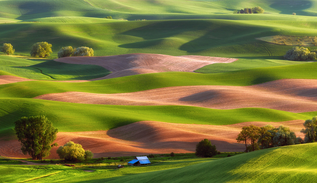 """Palouse Stripes"""