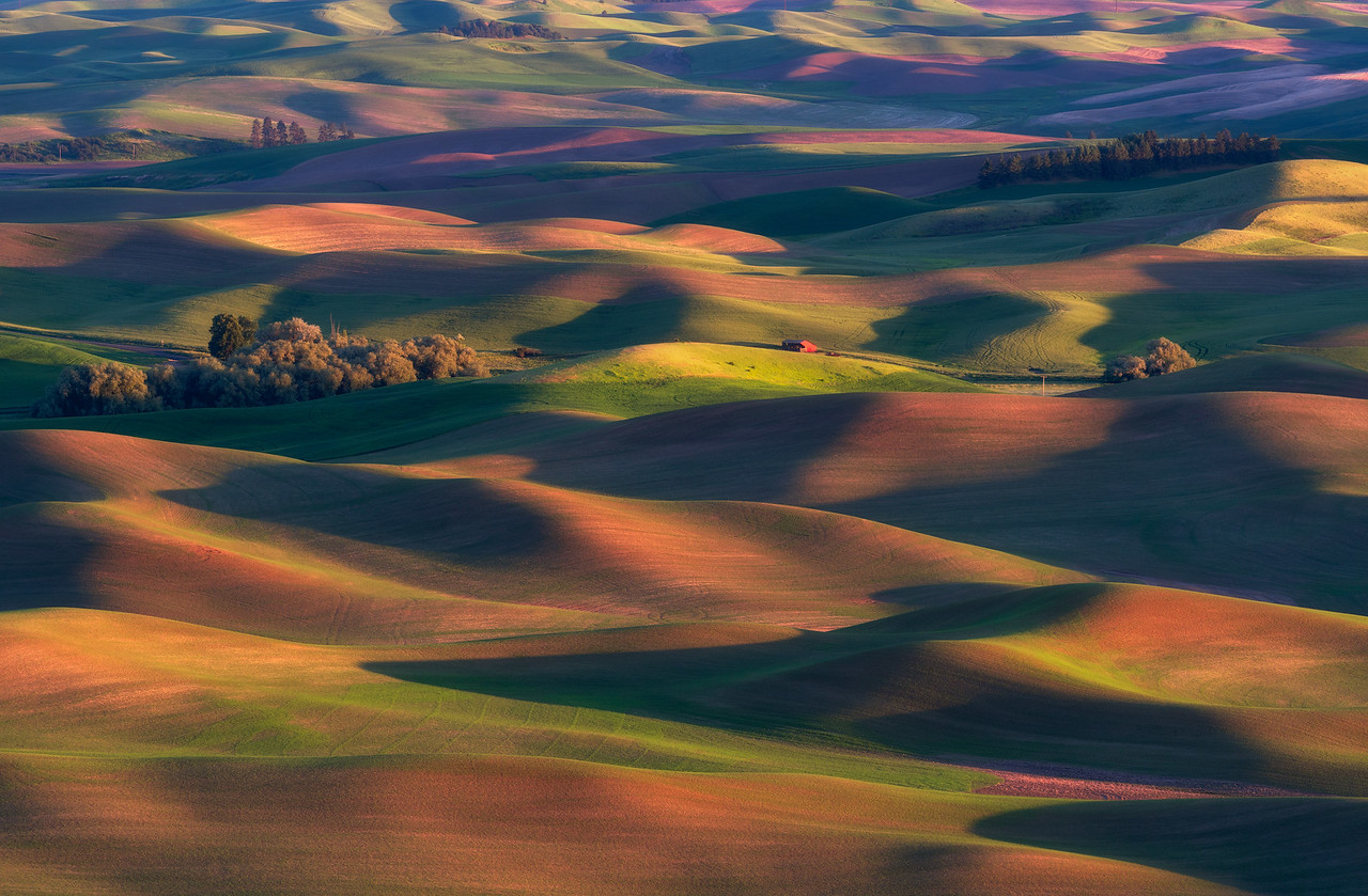"""""""Colors of the Palouse"""""""