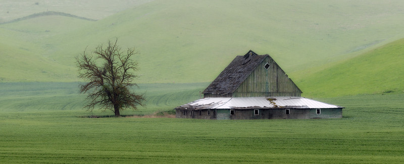 """The Green Barn"""