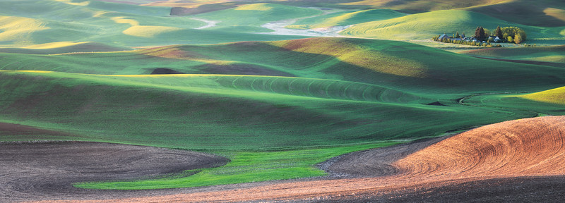 """Palouse Sunrise"""