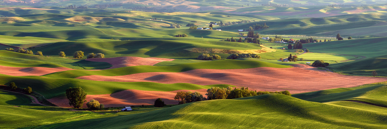 """Palouse Ribbons Panorama"""