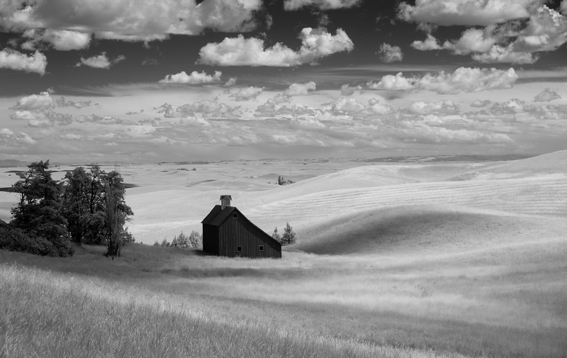 """Barn in Black and White"""