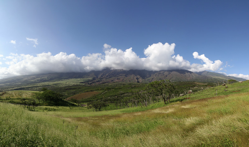 Hawaiian landscape - Big Island