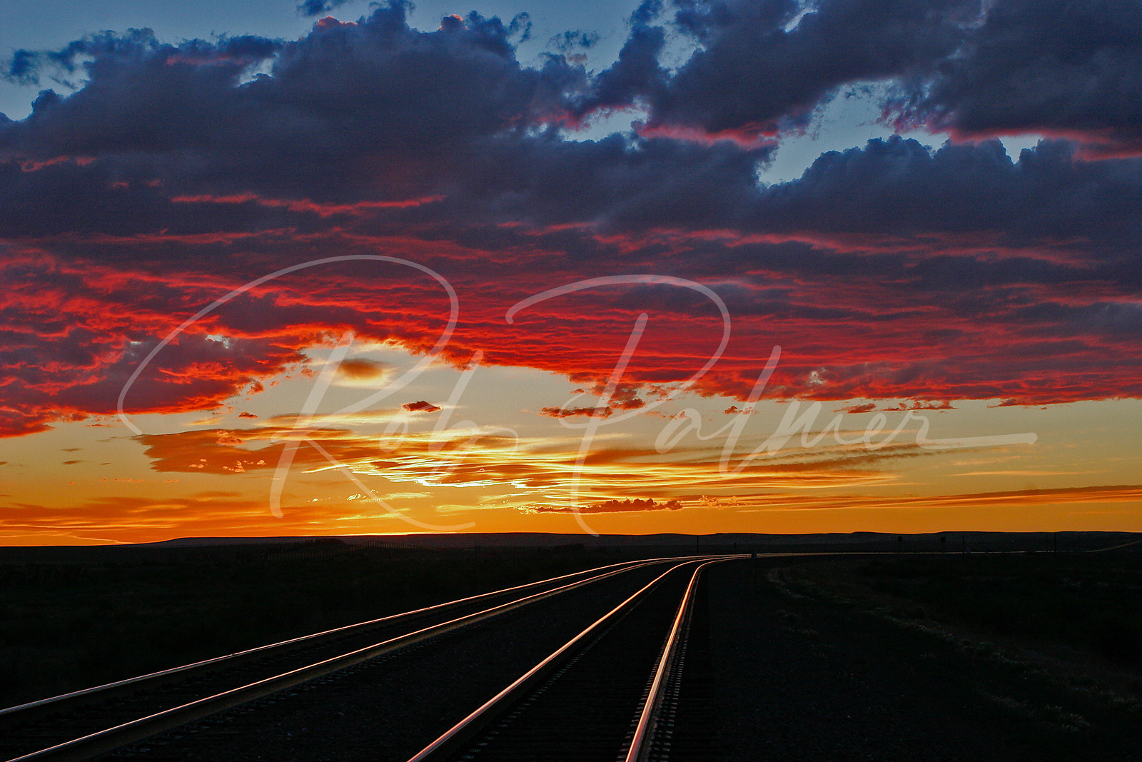 Tracks in the Evening, SE Wyoming