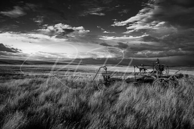 Old tractor bw