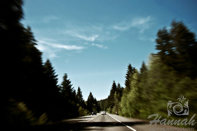 Pacific Northwest road with pine trees around  © Copyright Hannah Pastrana Prieto