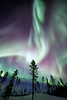 """""""The Dragon""""<br /> <br /> An incredible display of Northern Lights in Arctic Sweden."""