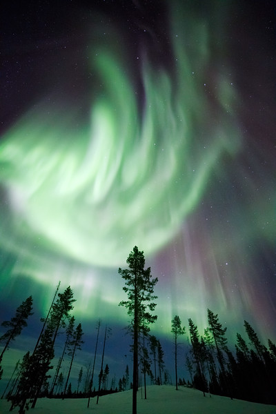 """Heartbeat of the Aurora"""