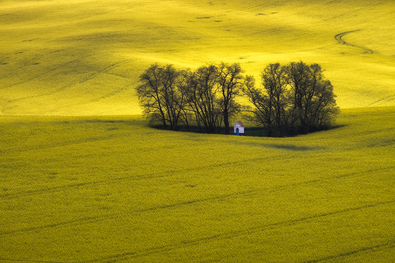 """Yellow Sea"""
