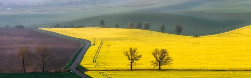 """""""Moravia"""""""