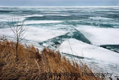 Ice Breaking Up on Lake Ontario