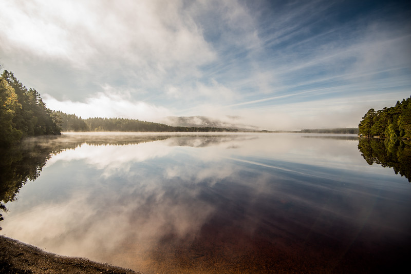 Loch Garten Misty Dawn - Scotland