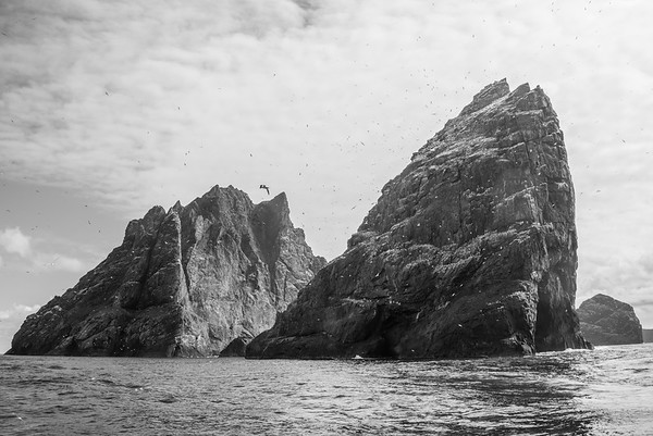 Boreray, Stac an Armin, Stac Lee - St. Kilda, Scotland