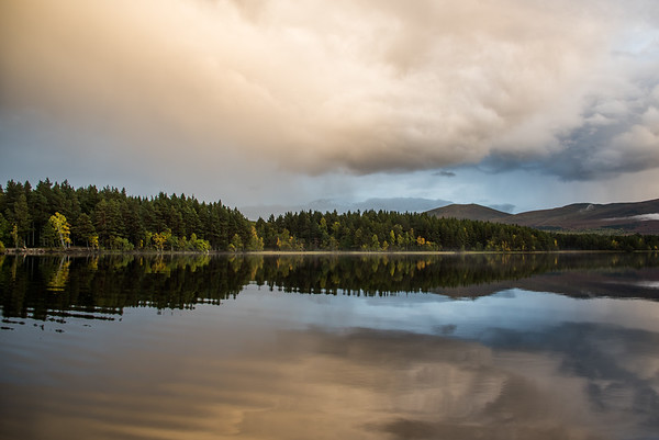 Loch Garten Autumn Reflection - Scotland