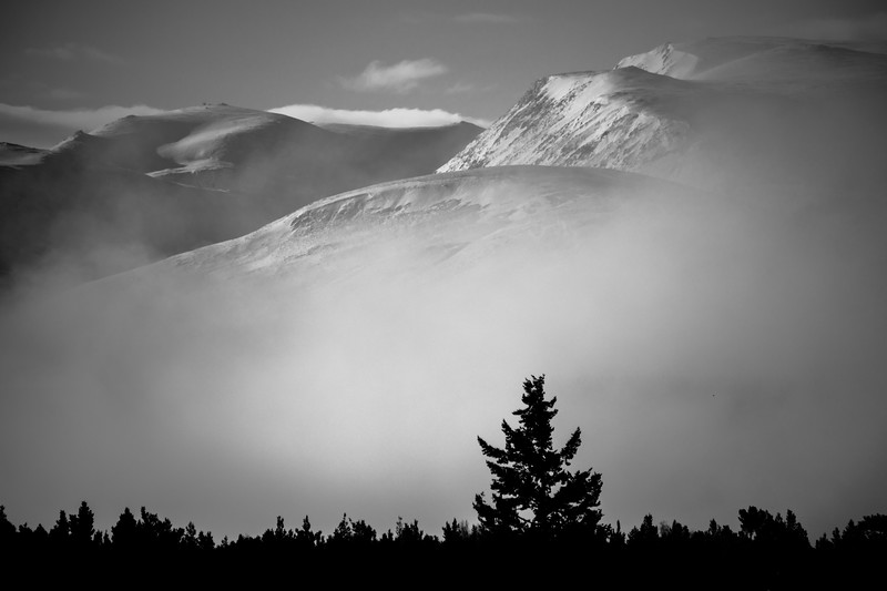 Pine to Peak - Cairngorm National Park, Scotland