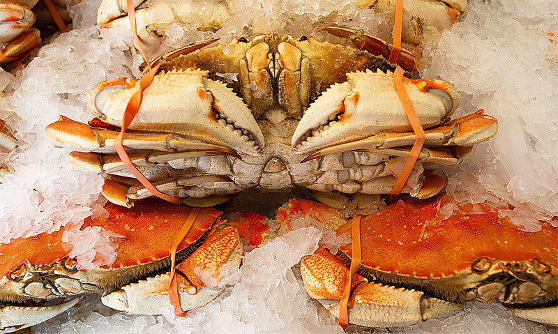 Dungeness Crab<br /> Pike Place Market<br /> Seattle, Washington