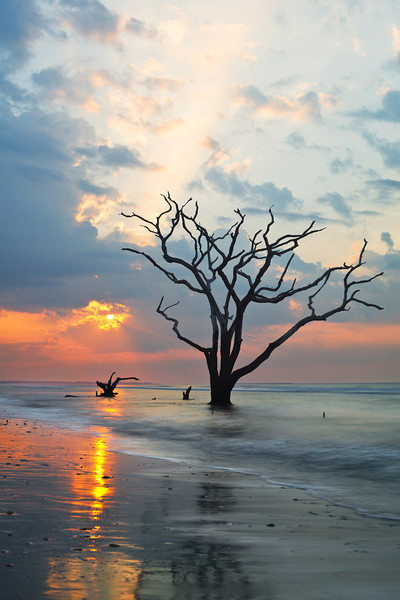 """""""Ray"""" - Botany Bay, Edisto Island   Recommended Print sizes*:  4x6  