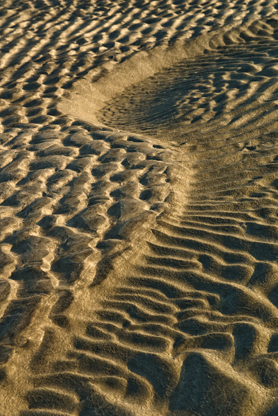 """Serpentine Sandbar"" -Myrtle Beach, South Carolina   Recommended Print sizes*:  4x6  