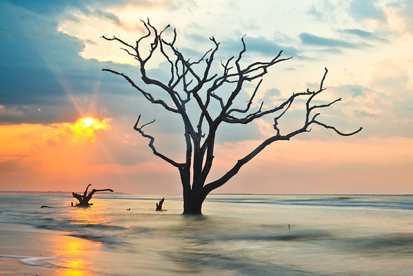"""""""Awakening"""" - Botany Bay, Edisto Island   Recommended Print sizes*:  4x6  