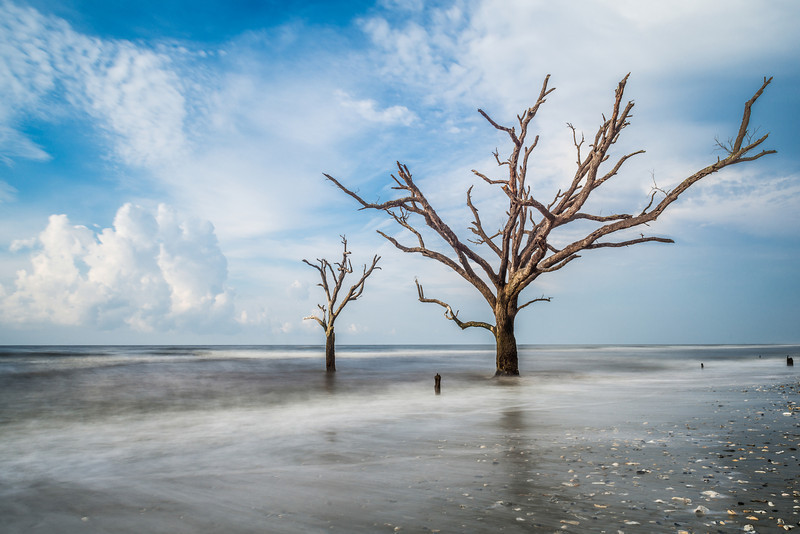 """Washed Up"" - Botany Bay, Edisto Island   Recommended Print sizes*:  4x6  
