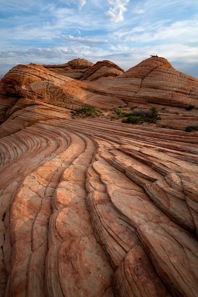 """Sandstone Scales"""