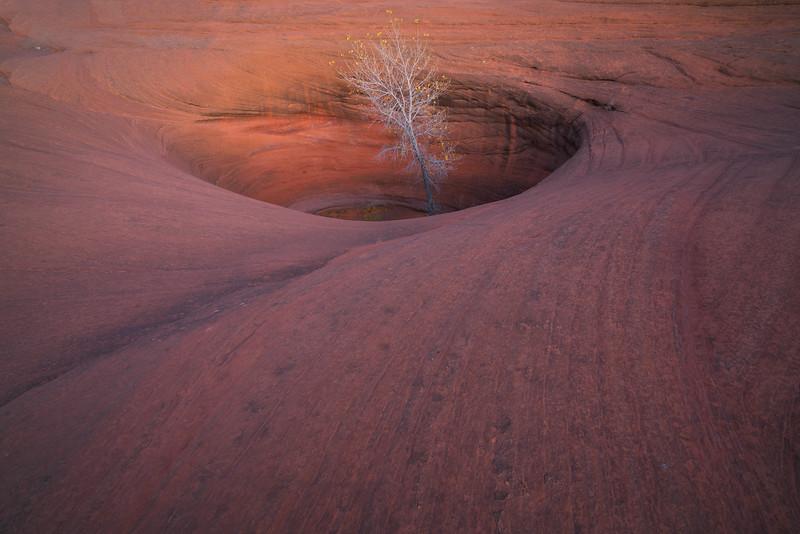 """Sandstone Oasis"""