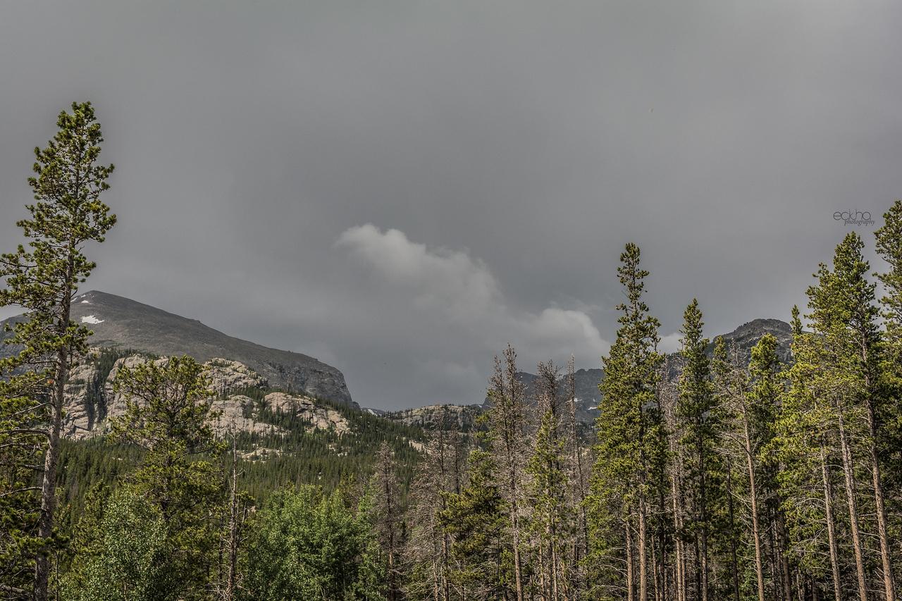 Storm Rushing In