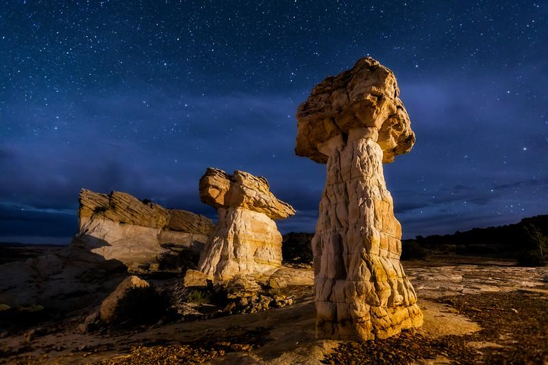 Starlight 'Shrooms