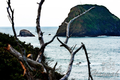 View of part of the Three Arch Rocks located in the Oregon Coast  © Copyright Hannah Pastrana Prieto