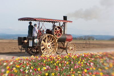Old steam engine taken at the Wooden Shoe Tulip Farm in Woodburn, OR Shot taken with the Lensbaby Composer for the blur effect  © Copyright Hannah Pastrana Prieto