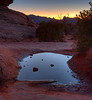 water hole by Delicate Arch<br /> Arches National Park  <br /> Utah