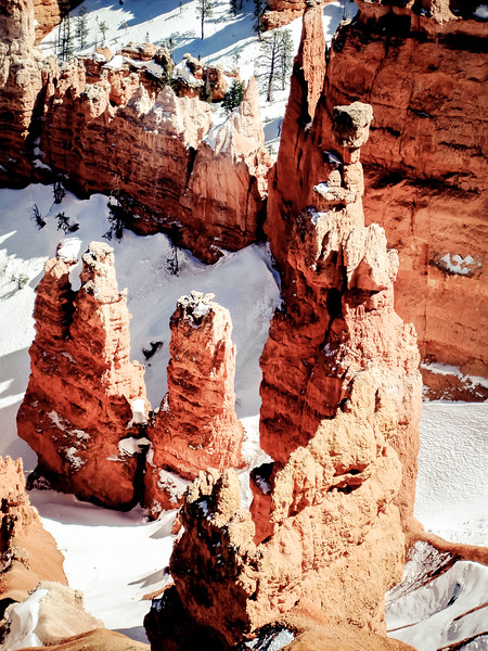 Bryce Canyon After Snowfall